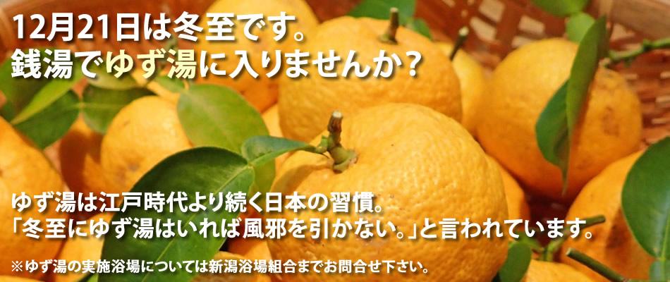 201612yuzuyu_1